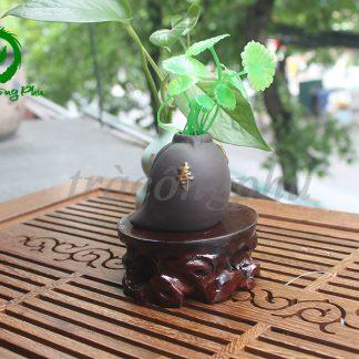 Bình Hoa Thọ Đào - BH22