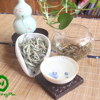 Bạch Trà Thượng Hạng - BT9800